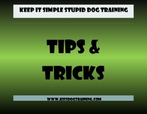 tip and tricks