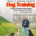 Bus Card Front K.I.S.S. Dog Training